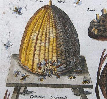 Beehive_2