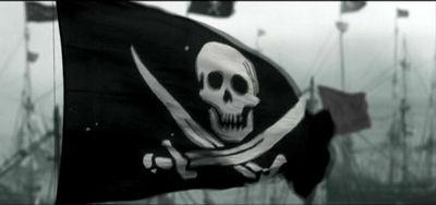 Johnnyflag